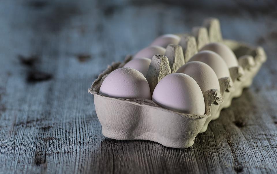 Lücke in Lebensmittelsicherheit führt zu Rückruf von Eiprodukten – Intransparenz in Lieferkette sorgt für Krankheitsausbruch