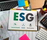 Nachhaltigkeit auf dem Vormarsch: Was bedeutet die ESG Offenlegungsverordnung für Unternehmen in Europa?