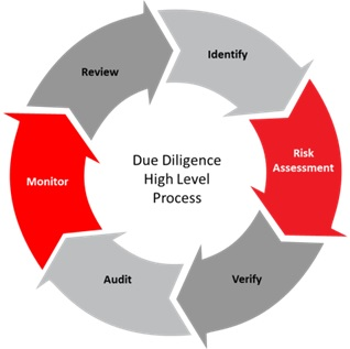 Due Diligence High Level Process