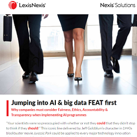 Download Whitepaper: Jumping into AI & big data FEAT first